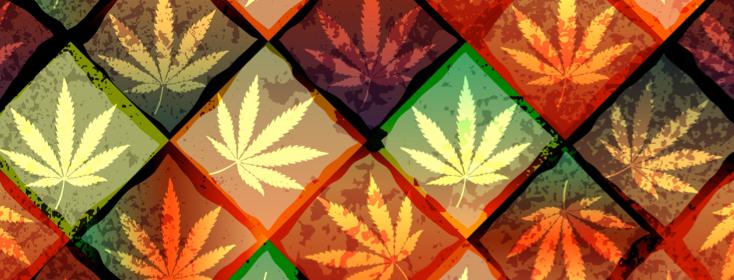 Risks and Benefits of Smokeless Marijuana