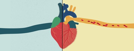 Heart Health and COPD image