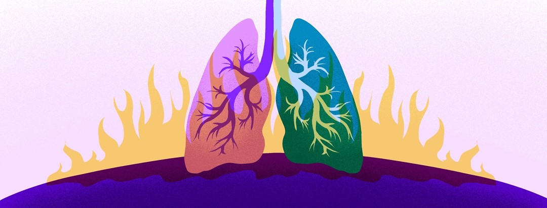 Two different colored lungs are both engulfed in flames.