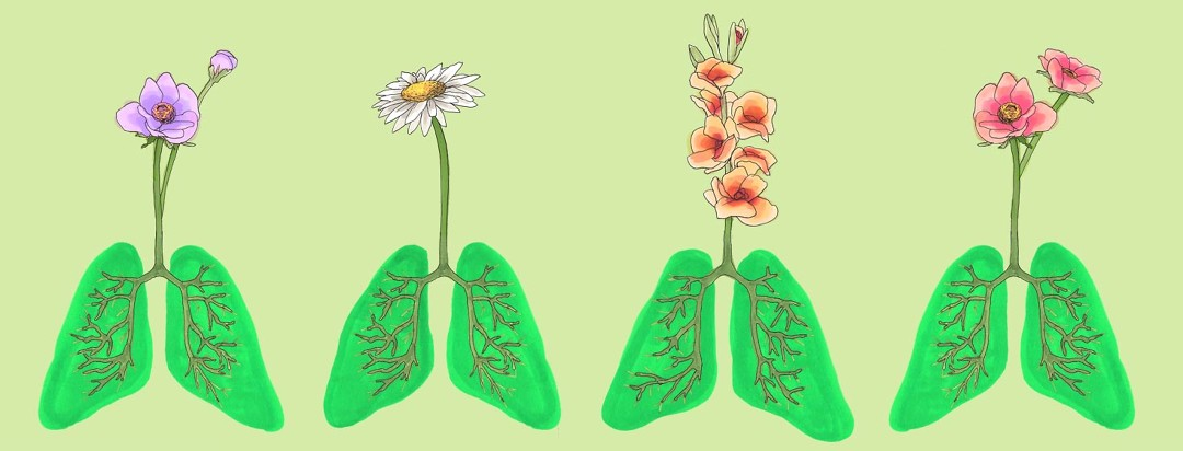lungs that have flowers growing out of them