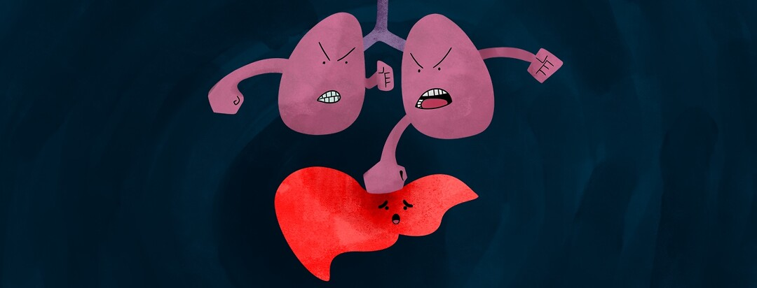 a cartoon pair of anthropomorphic lungs, has fists and is punching down at the liver