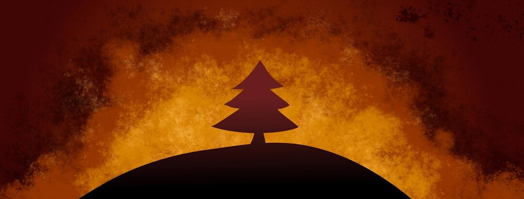 Silhouette of a tree on a hill surrounded by flames, fire, wildfire